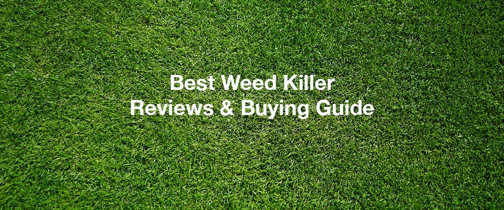 best-weed-killer-reviews-buying-guide